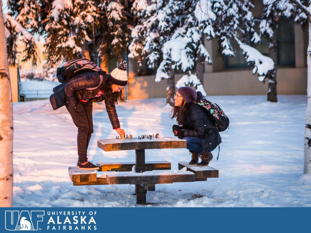 It's never too cold or snowy for a game of chess between friends.